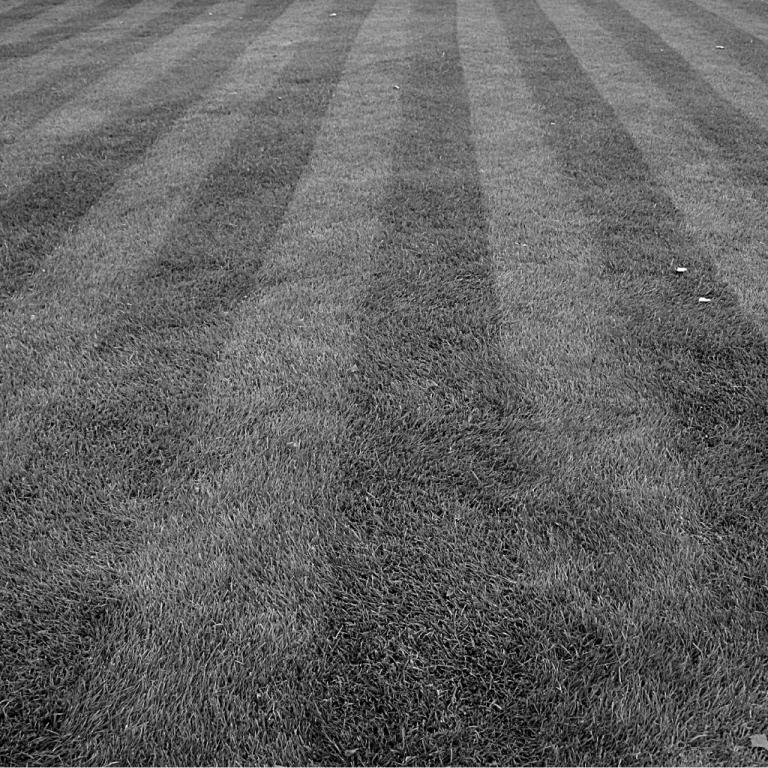 Gresham landscape pros lawn care
